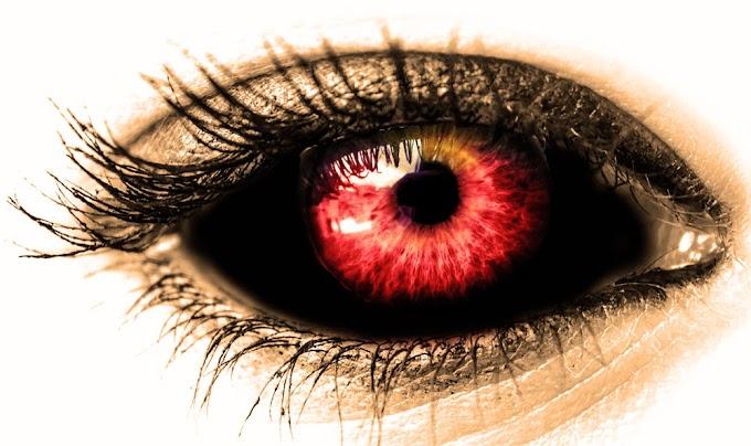 Mata bisa melihat segala hal kecuali dirinya sendiri.
