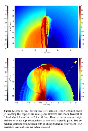 Computer simulation of stellar explosion with cocoon (Source: Gottlieb, et al arXiv/1710.05896v1)