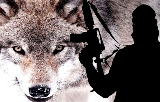 «Κόκκινος συναγερμός» στην ΕΛΑΣ – Μέτρα ασφαλείας στην Αττική για πιθανή επίθεση από «μοναχικούς λύκους»!