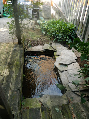 Playter Estates Toronto late summer garden clean up after by Paul Jung Gardening Services