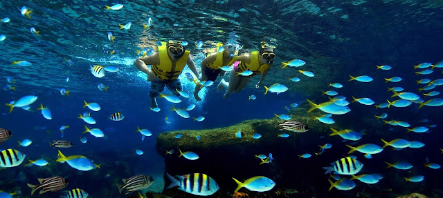 Biệt thự biển Vinpearl Nha Trang có những tiện ích gì?