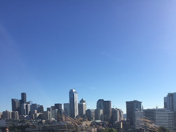 Best View Of Seattle Skyline: Capitol Hill