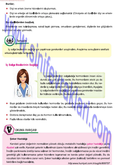 7. Sınıf Mevsim Yayınları Fen Bilimleri Ders Kitabı Cevapları Sayfa 39