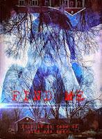 Find Me (2014) online y gratis