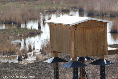 Caseta para murciélagos en el Delta del Ebro