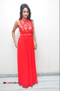 Actress Pooja Sri Pictures in Jeans at Saiya Re Album Launch  0180.JPG