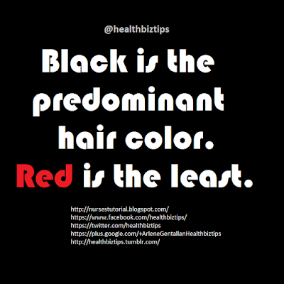 Black is the predominant hair color. Red is the least.