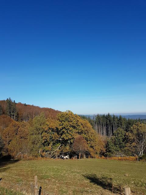 Les Monts de la Madeleine