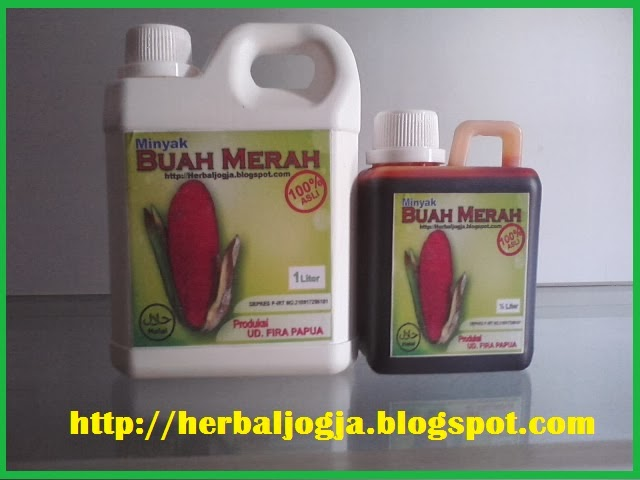 minyak buah merah papua