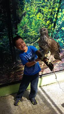 wisata keluarga ke batu secret zoo dan eco green park jatim nurul sufitri mom lifestyle blogger