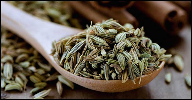 End The Day With Some Fennel Seeds To Reap Multiple Health Benefits