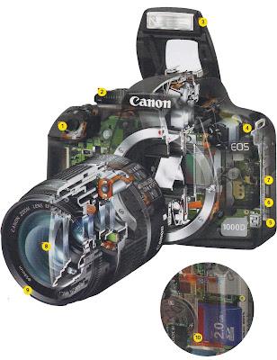 Anatomi D-SLR HD