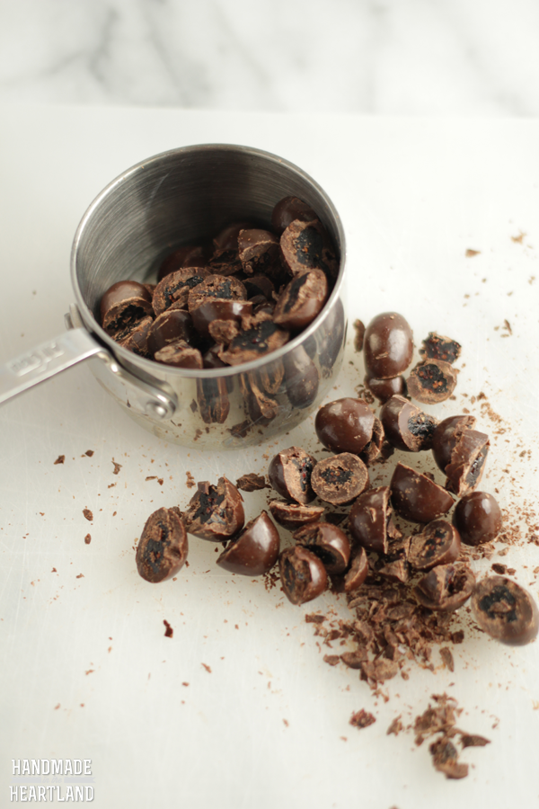 Dark Chocolate Recipes: Homemade Granola Bars with Chocolate Cranberries #lovedovefruits #cbias #shop