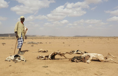 Bencana Kelaparan Ekstrim Di Somalia