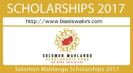 Solomon Mahlangu Scholarship 2017