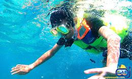 aktivitas snorkeling di wisata pulau harapan