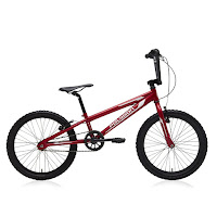 20 Polygon BMX Race Bike