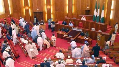 Mocked as 'errand boys', Senate condemns police assault on anti-Buhari protesters