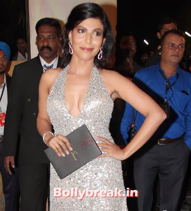 Shilpa Shukla, Filmfare Awards 2014 Red carpet Images