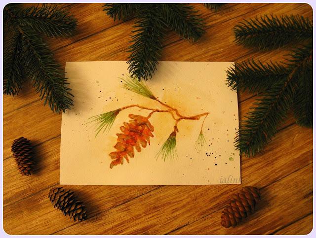 акварель рисунок рисую шишка
