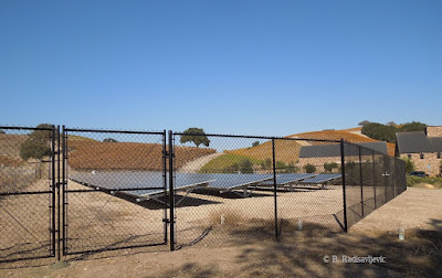 Solar Panels at Edge of Niner Vineyard, © B. Radisavljevic