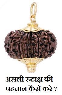 asli-nakli-rudraksha-ki-pahchan-kaise-kare