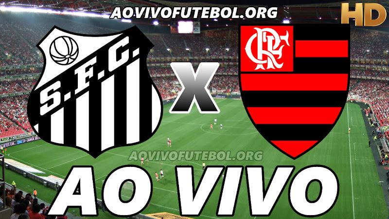 Santos x Flamengo Ao Vivo na TV HD