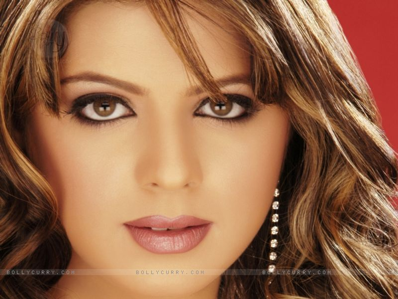Rucha Gujrati Hot Sexy Wallpapers  Hot-Celebs-Wallpapers-6531