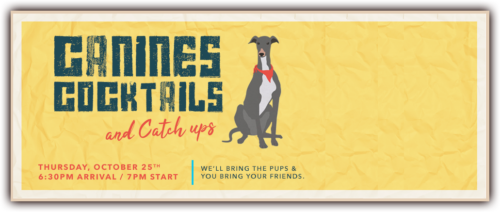 Canines Cocktails and Catch ups Canberra October 2018 Poster