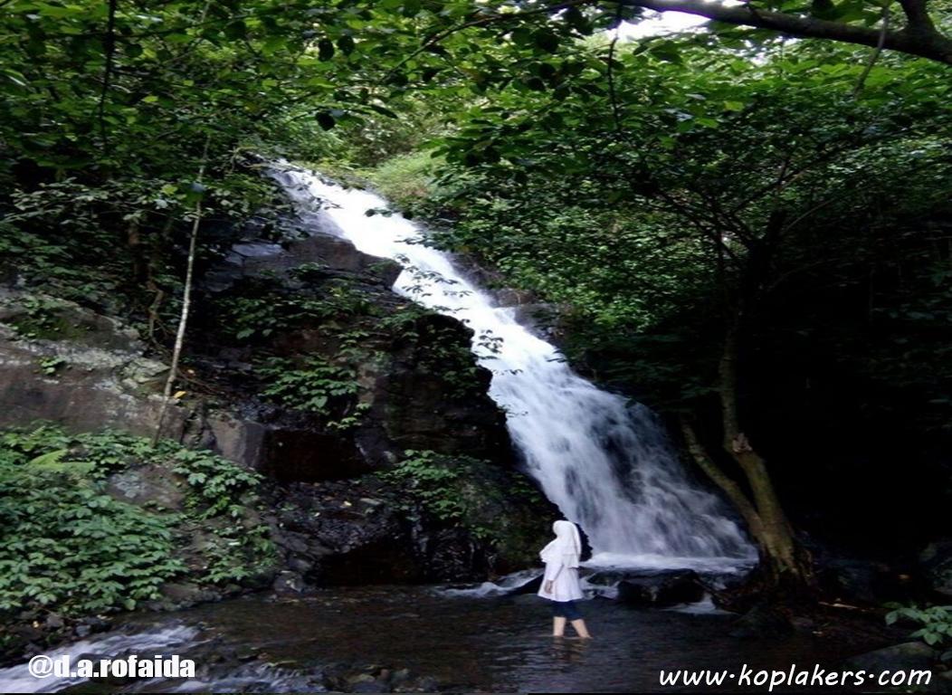 Rute dan lokasi air terjun selolapis bukit seloringgit wonosalam jombang