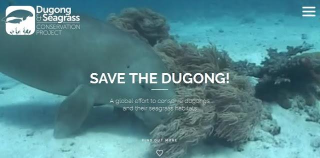 Save Dugong, Save The World