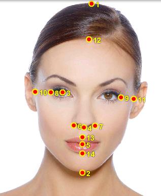 Facial Beauty Calculator 77