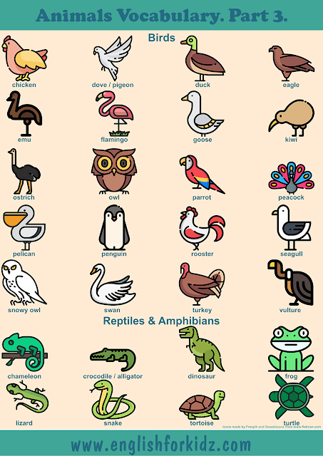 Birds vocabulary and reptiles vocabulary to learn names of animals in English – printable ESL worksheets