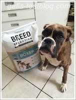 Trockenfuttertest - Wildsterne Breed Selection - Boxer