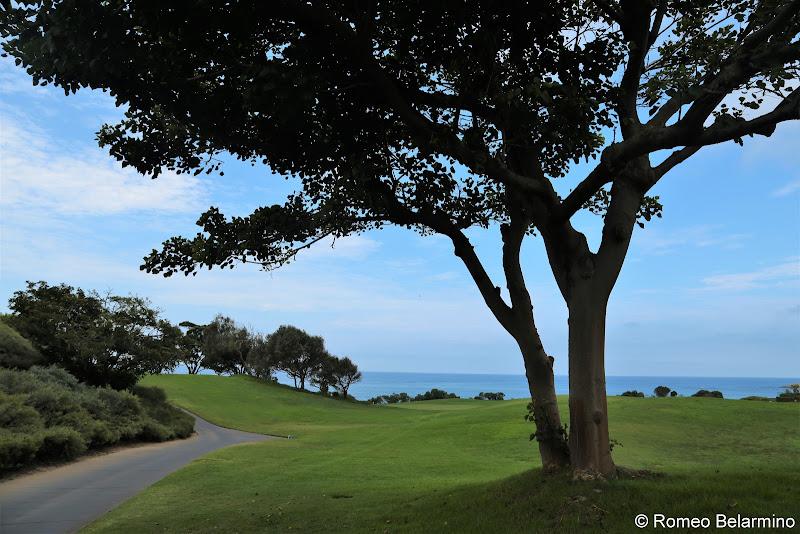 Monarch Beach Golf Links Holes 3 and 4 St. Regis Monarch Beach Dana Point