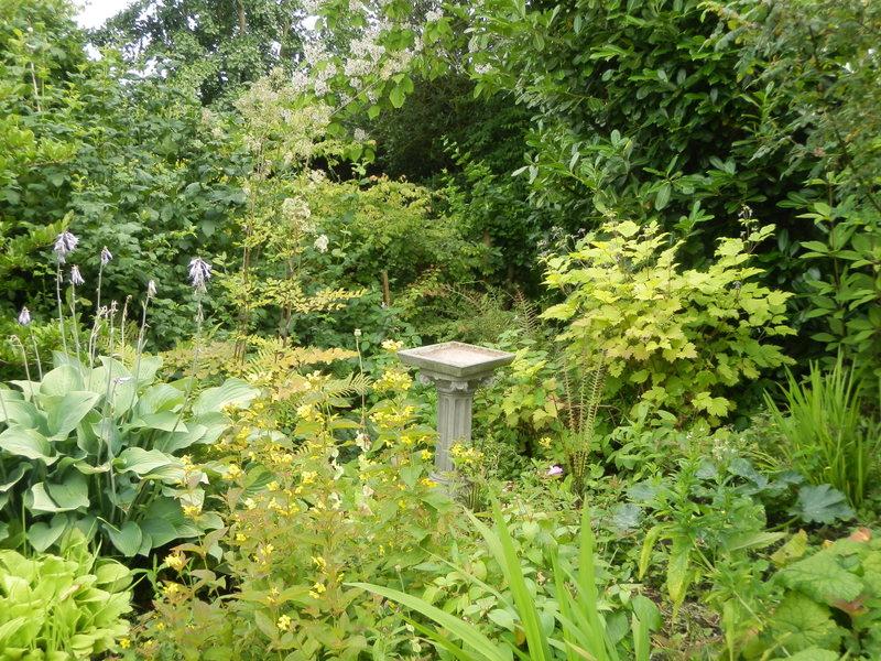 Het bloeiende buitenleven het tuinontwerp deel i the design of our garden for Beneden tuin