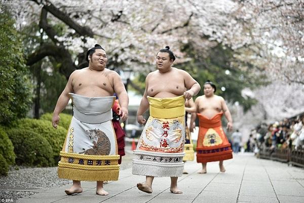 Секреты японских женщин: как худеют японки и сохраняют молодость
