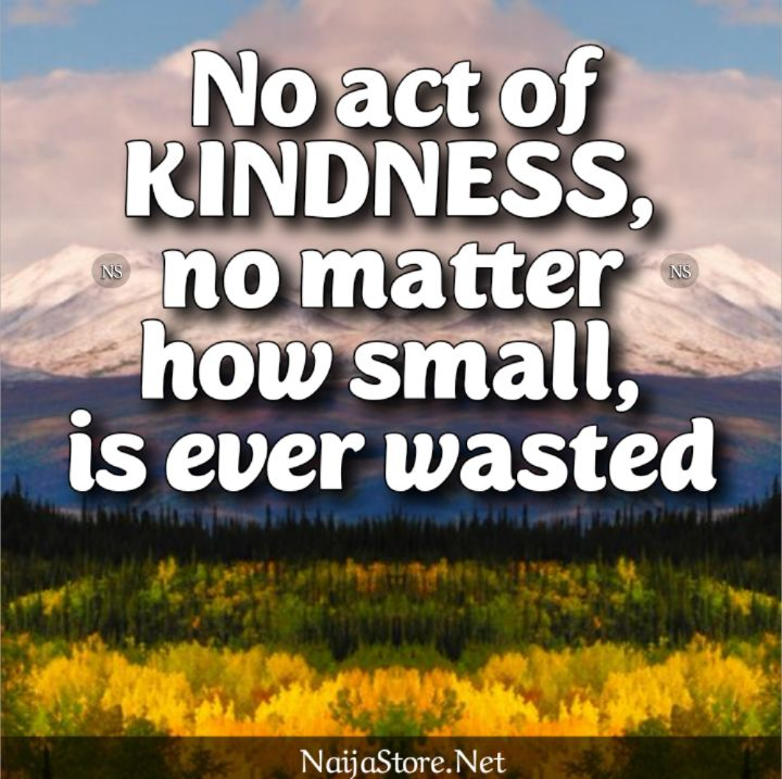 Kind Quotes: No act of KINDNESS, no matter how small, is ever wasted - Motivation