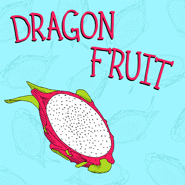 dragon fruit illustration for a children's book