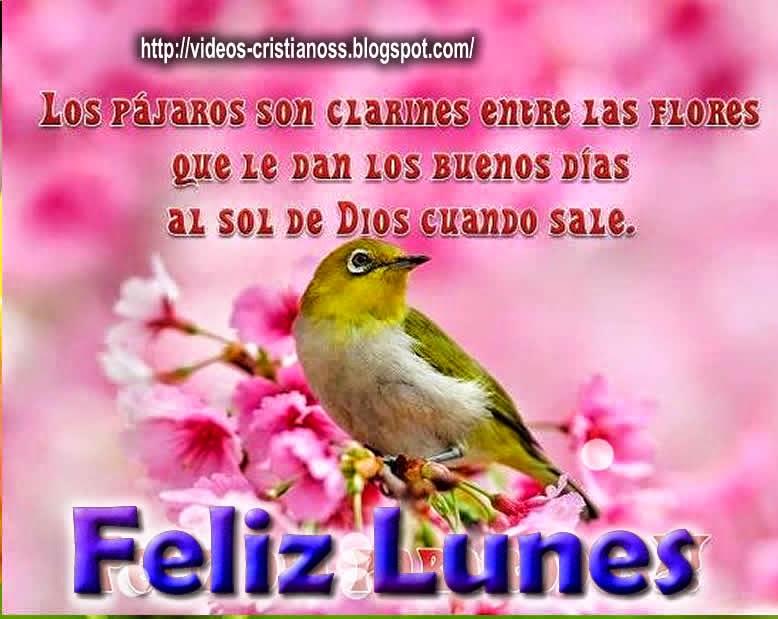 Feliz Lunes Tarjetas Cristianas Gratis Tustarjetitascom
