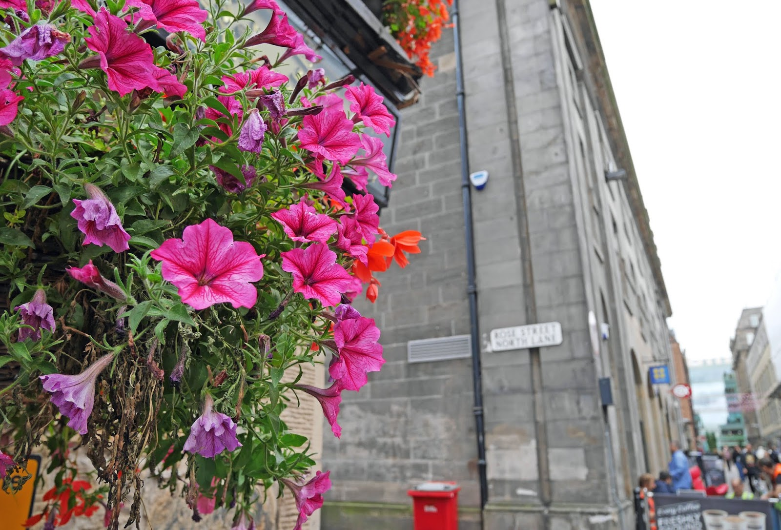 Flowers on Rose Street, Edinburgh