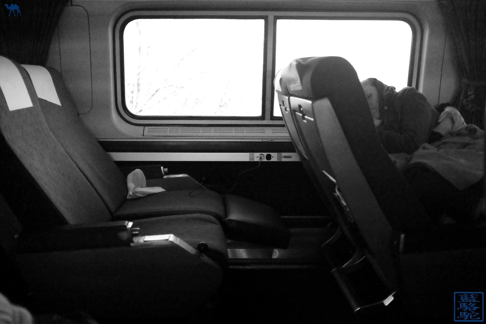 Le Chameau Bleu - La dormeuse du train pour Chicago