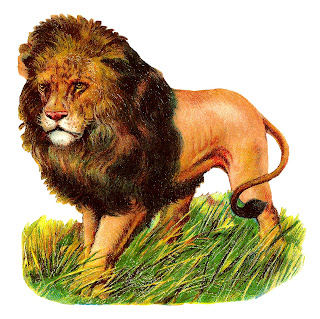lion wild image animal clipart illustration download