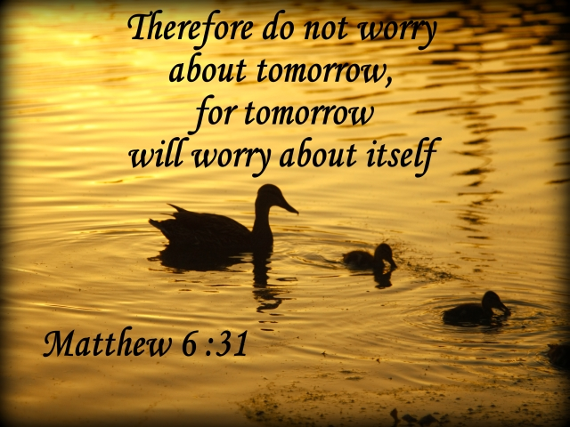 Bible Verses About Not Worrying