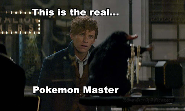 fantastic beasts pokemon meme
