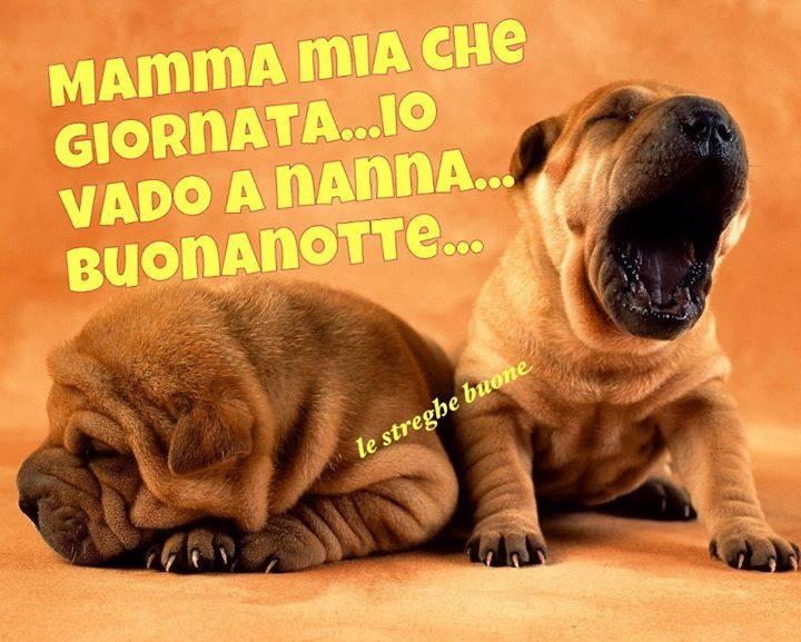 Preferenza Le streghe buone ® the original (pagina facebook): I link della  KI28