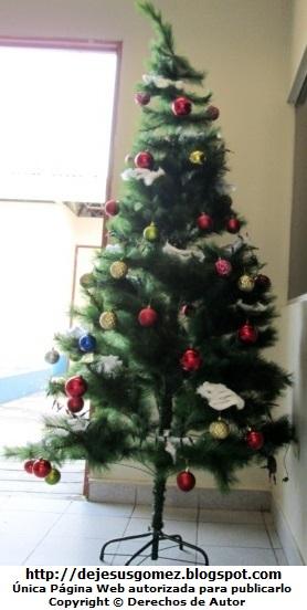 Árbol de Navidad en Odontología del Hospital Negreiros (Callao - Perú). Foto del Arbol de Navidad de Jesus Gómez