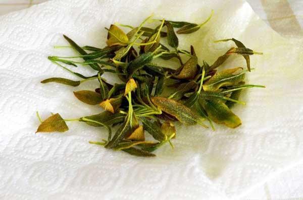 На данной стадии важно не отходить от плиты, потому как шалфей горит очень быстро.  Выложить листья на бумажные салфетки и посолить.