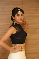 Roshni Prakash in a Sleeveless Crop Top and Long Cream Ethnic Skirt 032.JPG