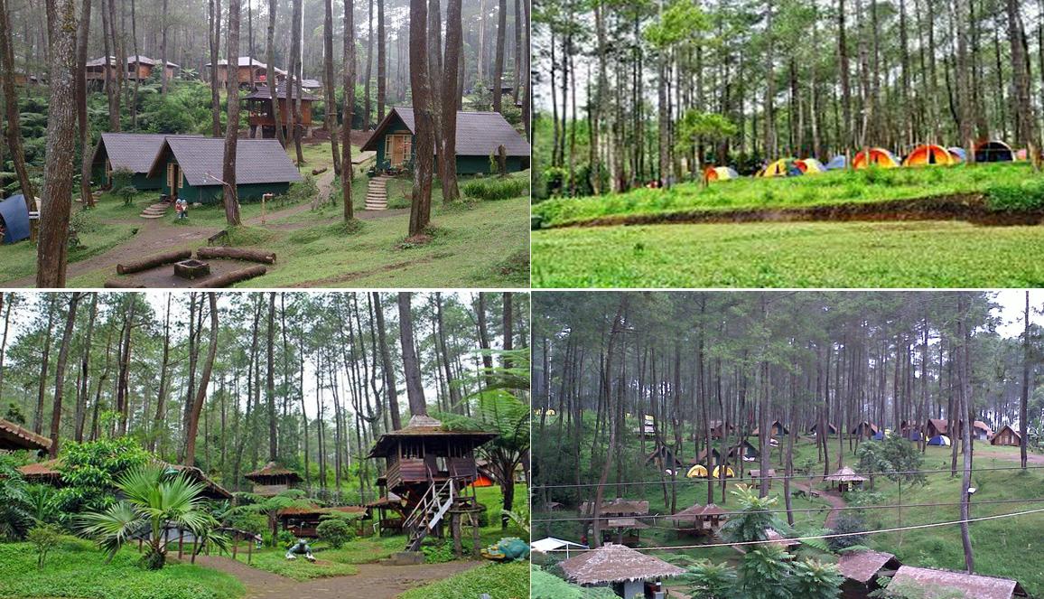 gambar wisata cikole bandung Grafika Cikole Lembang Wisata Terpadu Dalam Satu Kawasan